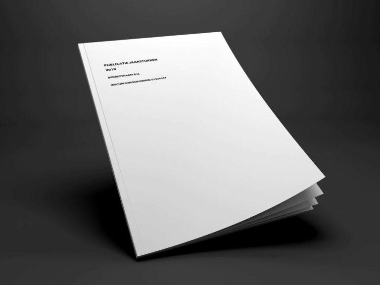 publicatie jaarstukken deponering kvk