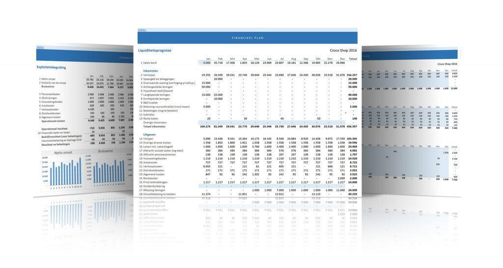 Financieel Plan schermvoorbeelden