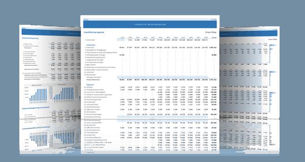 Financieel meerjarenplan schermvoorbeelden