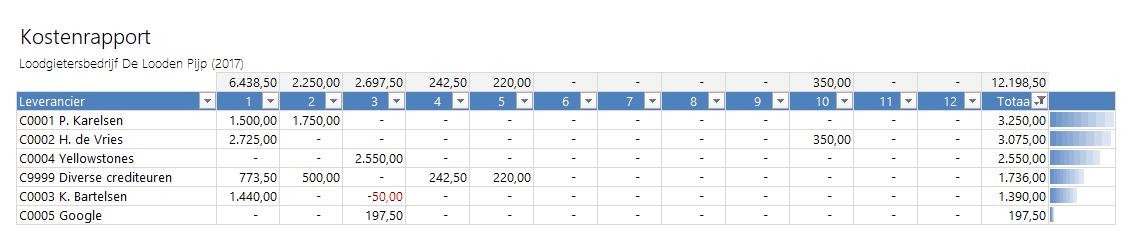 Kostenrapport - Boekhouden in Excel 5.0