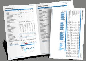 Liquiditeitsprognose Financieel Jaarplan