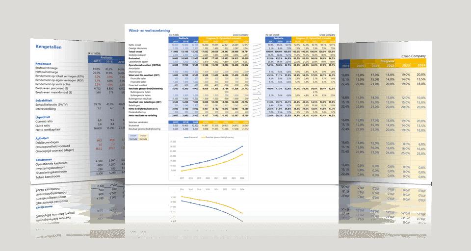 Schermvoorbeelden financieel rapportagemodel