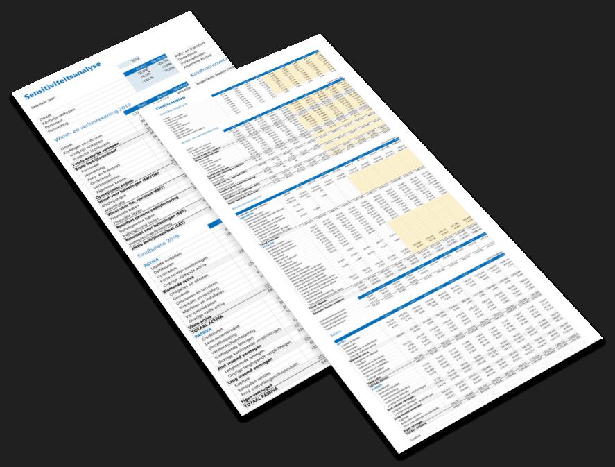 Financieel Plan in Excel voorbeeld