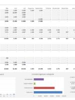 Investeringsbegroting Excel